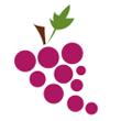 Hroznové víno čerstvé