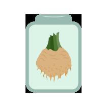 Celer bulva kvašená