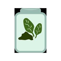 Špenát kvašený