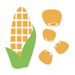 Kukuřice mražená