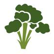Brokolice mražená