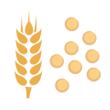 Kuskus pšeničný
