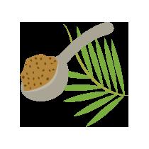 Cukr palmový