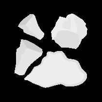 Kuzu škrob prášek