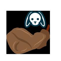 Zajíc stehno