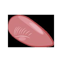 Kachna prso bez kůže
