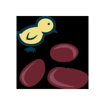 Droby kuřecí směs