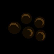 Čočka černá neloupaná