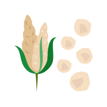 Vločky quinoové