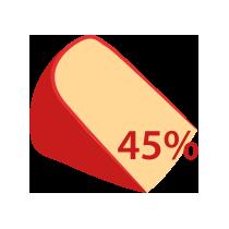 Gouda 45% t. v s.
