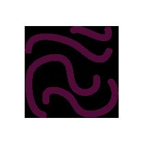 Řasy Hijiki sušené