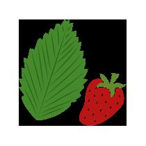 Čaj list jahodníku