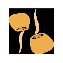 Kukuřice klíčená