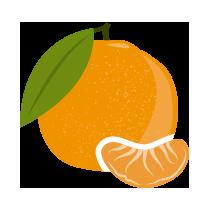 Mandarinka čerstvá