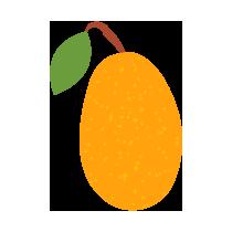 Kumquat čerstvý