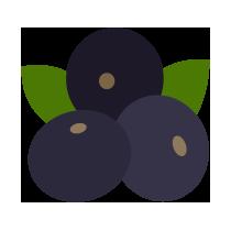 Borůvky acai čerstvé