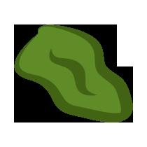 Kiwi sušené