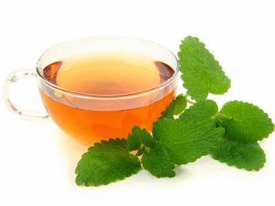 Meduňkový čaj