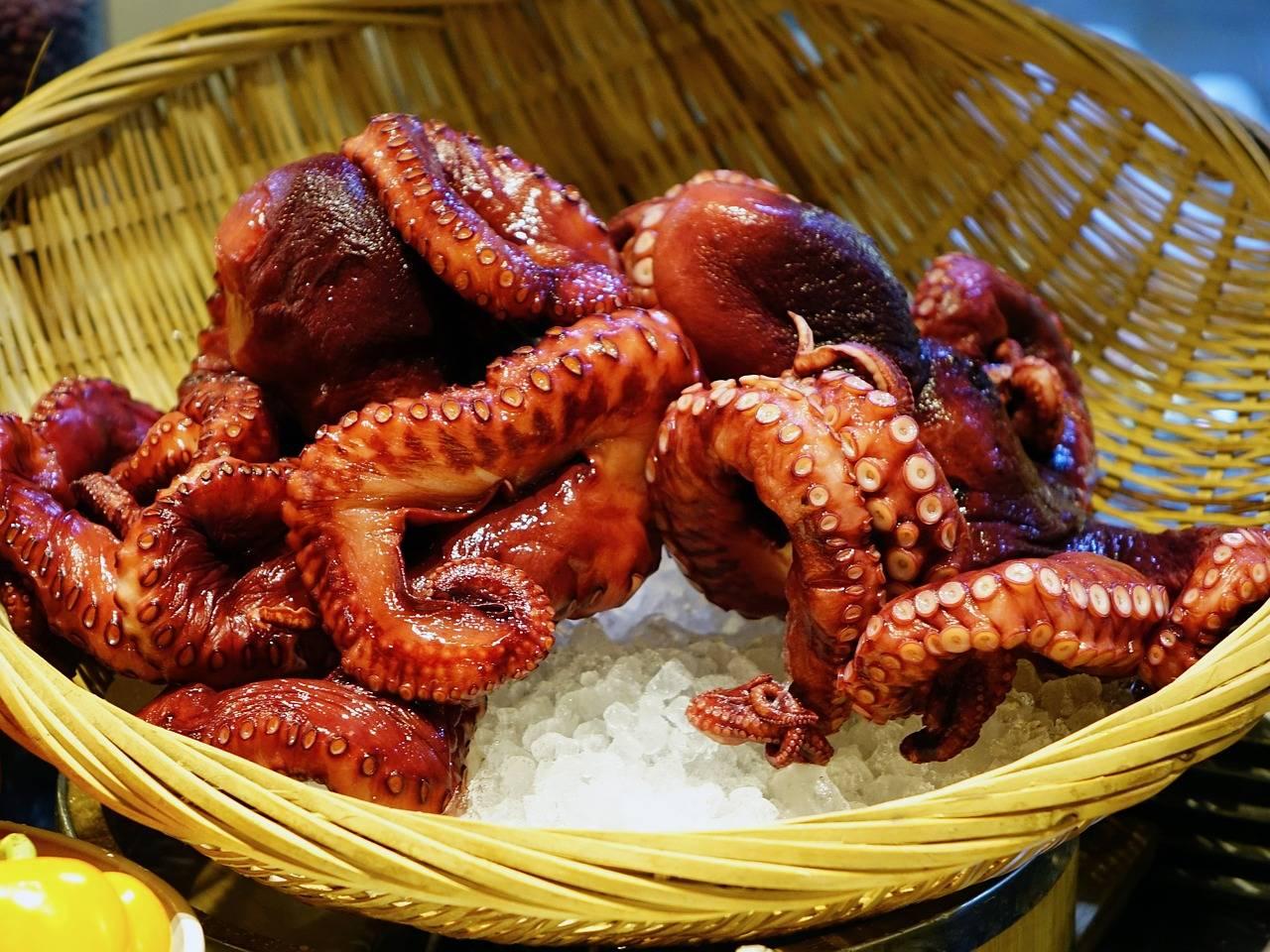 Grilovaná chobotnice